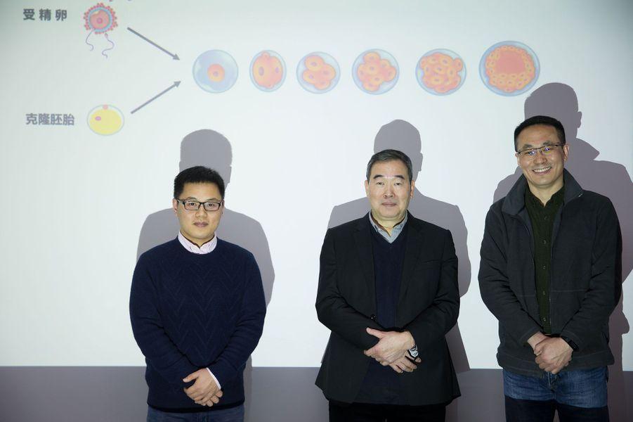 Zhong Zhong et Hua Hua ont été clonés avec la même méthode utilisée pour la brebis Dolly, il y a 20 ans