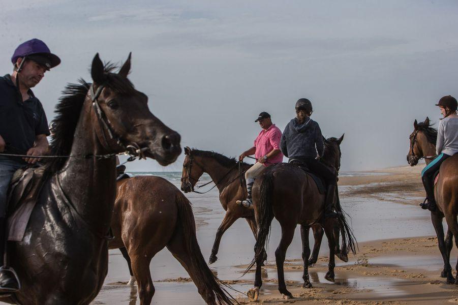 Bruno Lapassere, en t-shirt rose, en balade à cheval avec purs-sangs et cavaliers, sur la plage de la Garonne. Bruno gère, avec Nicolas Canteloup, le centre hippique de Lège-Cap-Ferret.