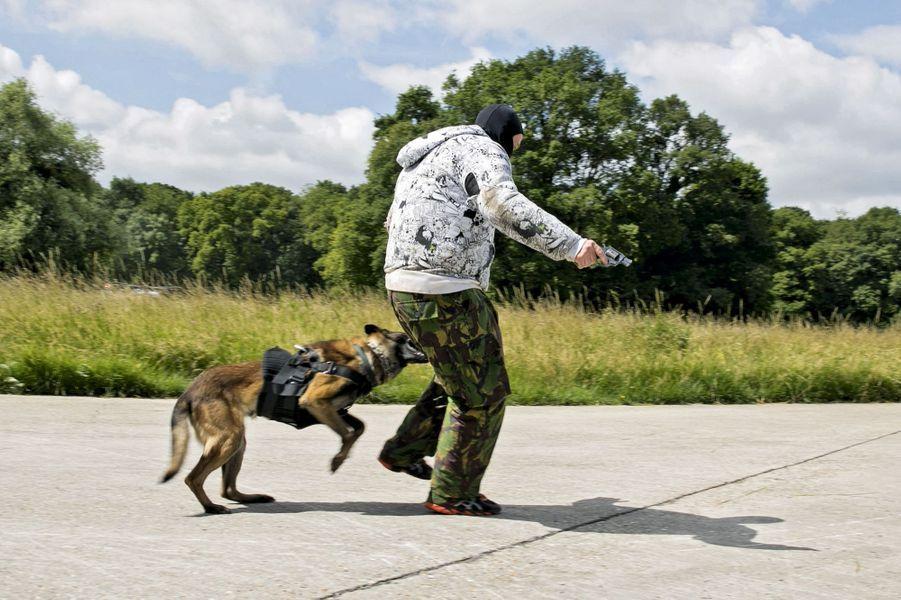 Un gendarme déguisé en terroriste, aux prises avec les crocs de Graff.