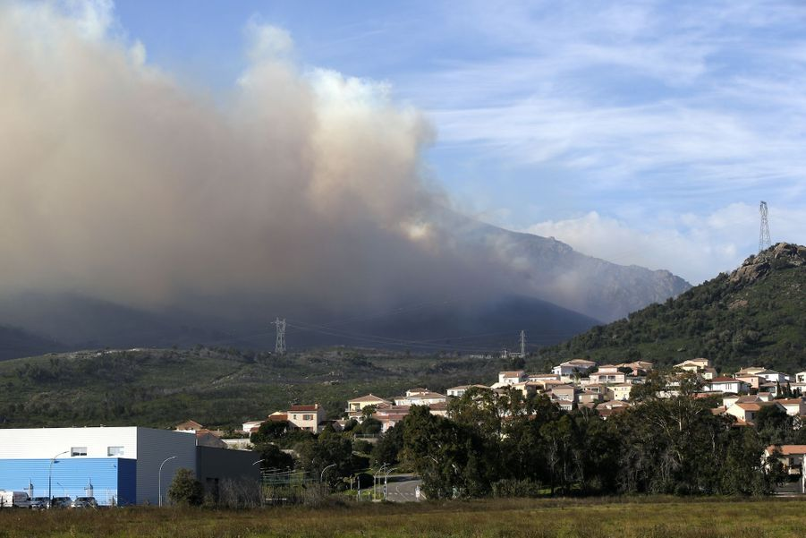 Biguglia en Corse, le 11 février 2020.