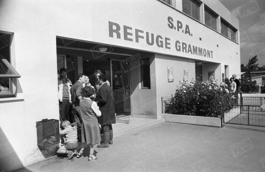L'entrée du refuge SPA Grammont de Gennevilliers,27 juin 1980.