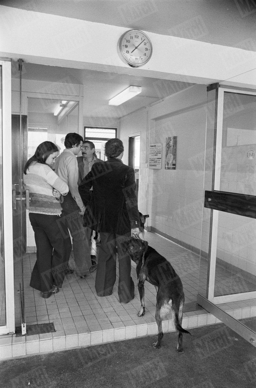 """«À la SPA de Gennevilliers, on se bouscule au bureau des abandons. Excuse n°1 des maîtres : """"mon chien mord"""".»(Paris Match n°1625, 18 juillet 1980)"""