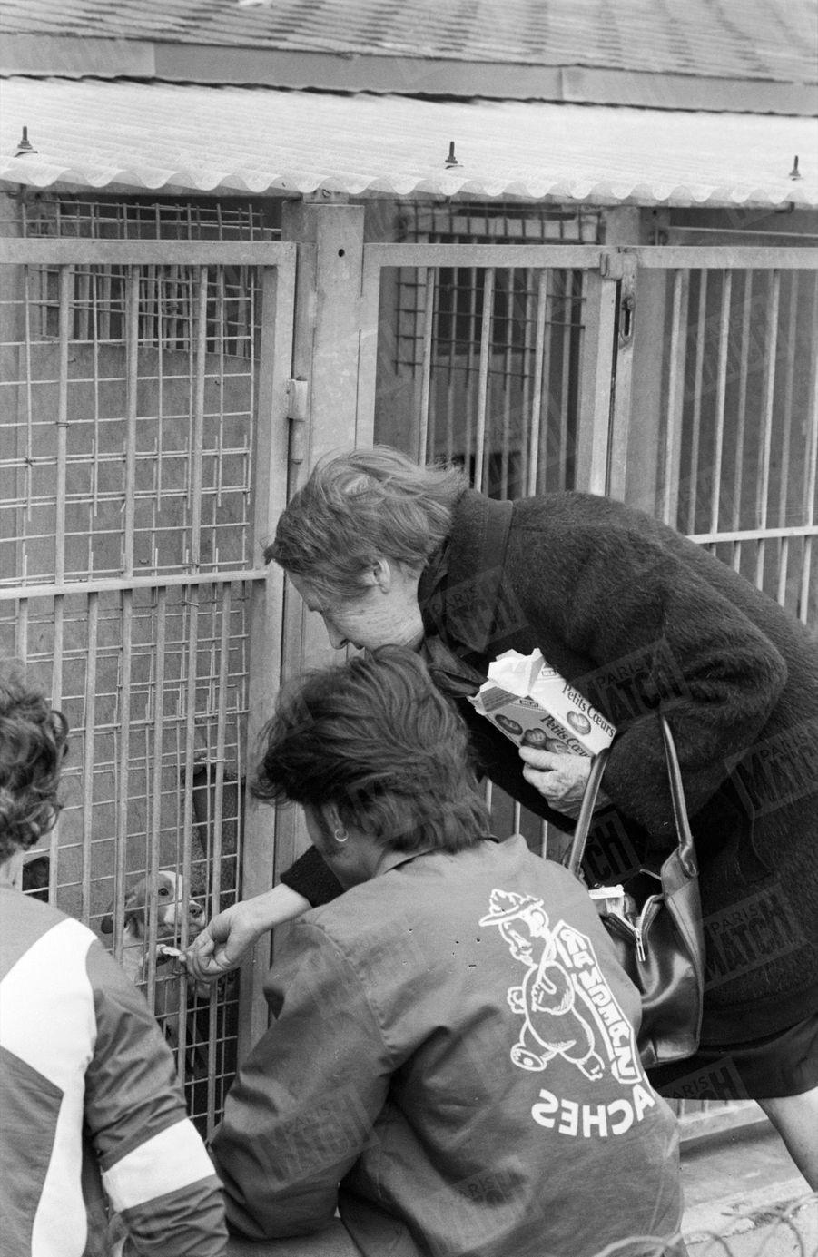 Une dame donne un gâteau à un chien, dans une cage.