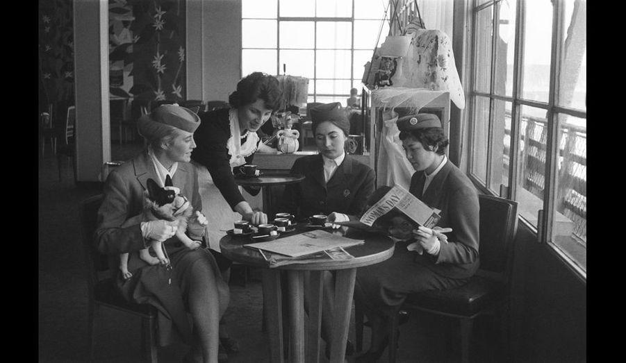 Trois hôtesses patientent... pause-café à l'aéroport Paris-Orly, détente entre peluche et magazines de mode.