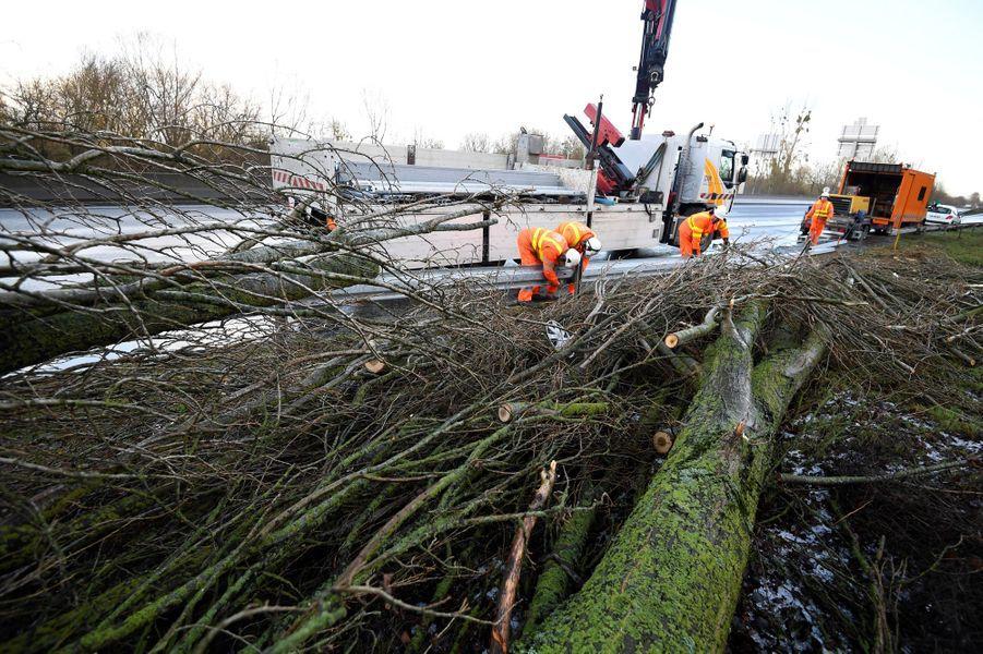 Evacuation d'un arbre sur la route d'Avranches, dans la Manche, le 13 janvier 2017.