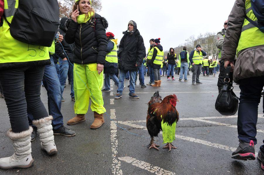 Acte 9. A Bourges, la manifestation débute dans les joies et la bonne humeur. 12 janvier 2019.