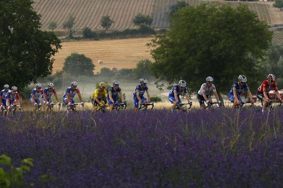 Le peloton passe devant un champ de lavande, lors de l'étape Pont Du Gard -Gap,le 24 juillet.