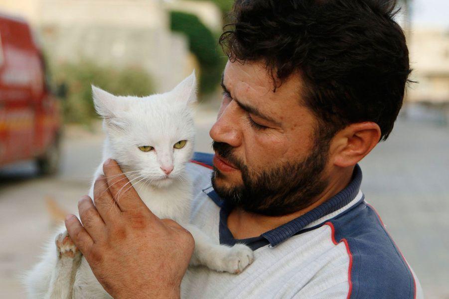 Alaa s'occupe des chats d'Alep, malgré la guerre