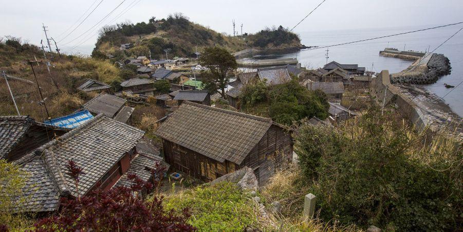 Aoshima, l'île aux chats