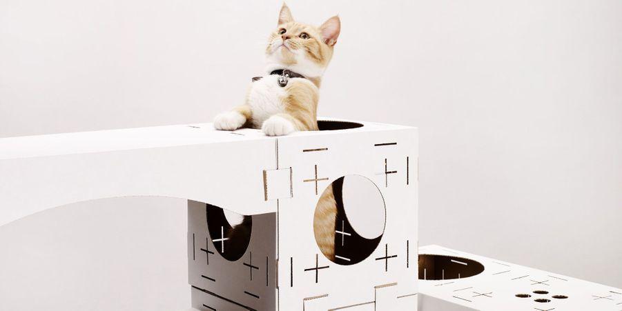Blocks, la maison de jeu pour chats à monter soi-même