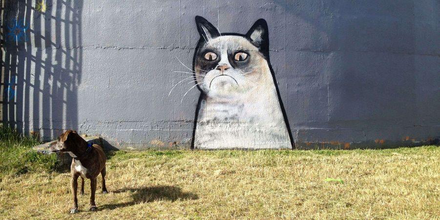 Grumpy Cat en graffiti