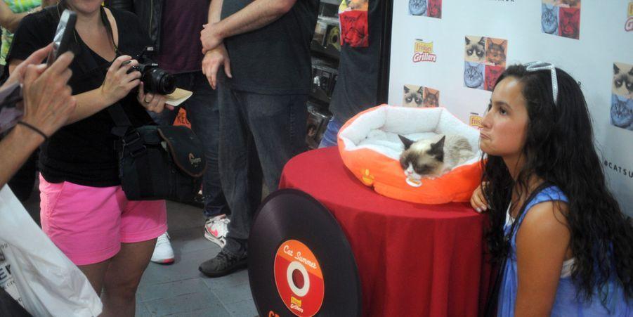 Les fans posent avec Grumpy Cat