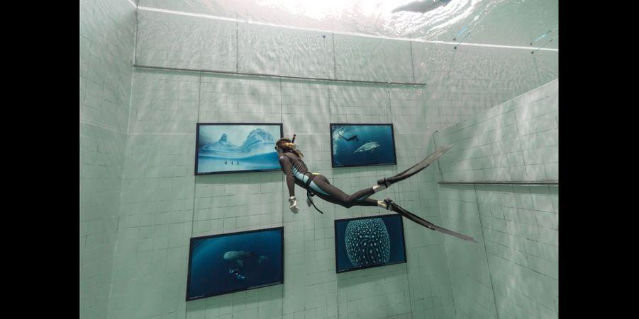 Exposition dans une piscine de Bruxelles