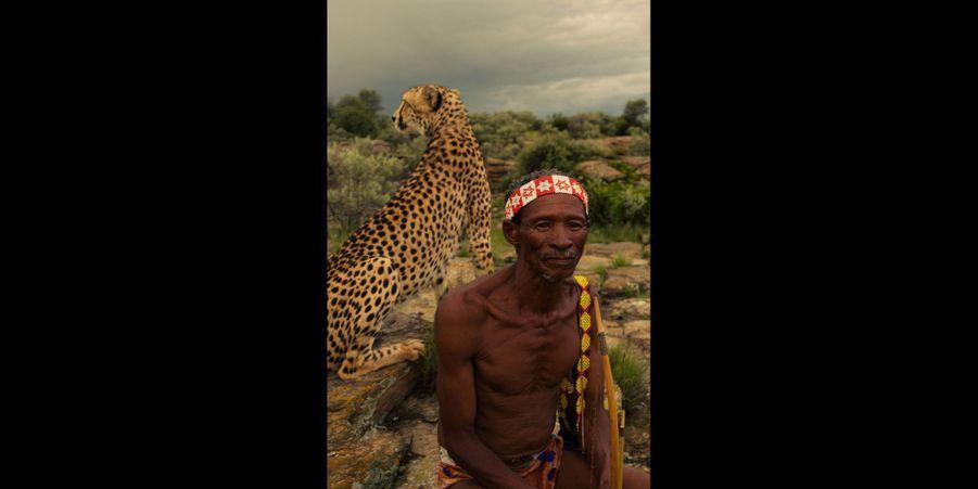 Partie de chasse avec un guépard en Namibie