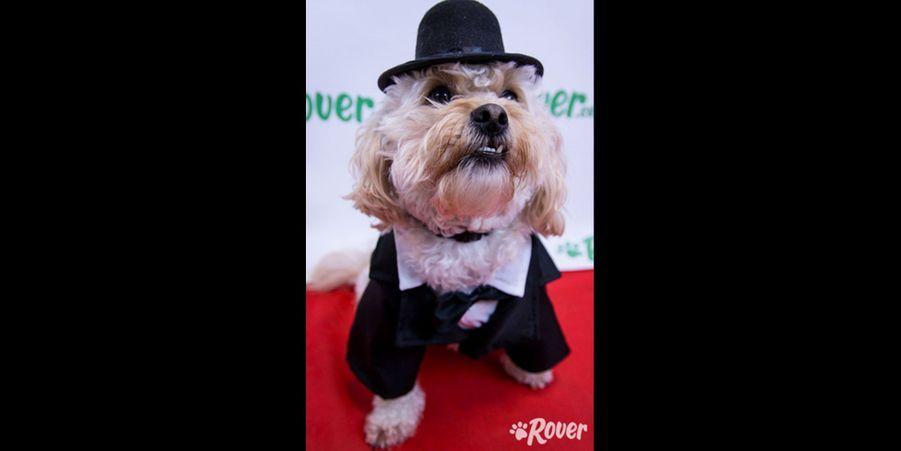 Bowser imite Diane Keaton aux Oscars en 2004