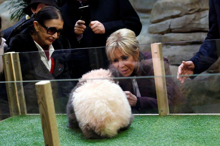 A 4 mois avec Brigitte Macron