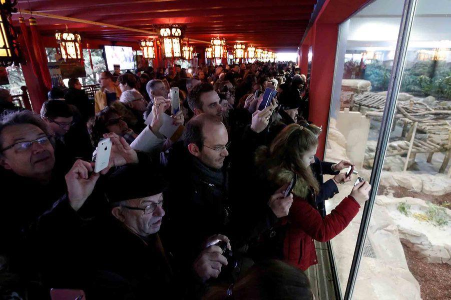 Les spectateurs conquis devant le spectacle.