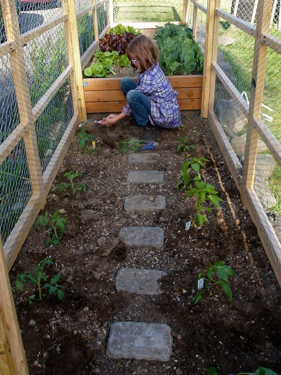 Hailey Ford cultive des légumes.