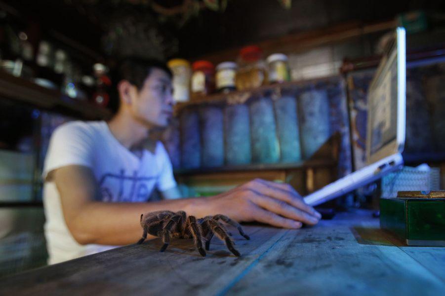 A Hanoï, un café d'un nouveau genre