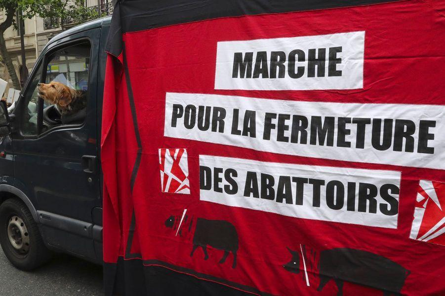 A Paris, ils marchent pour la fermeture des abattoirs