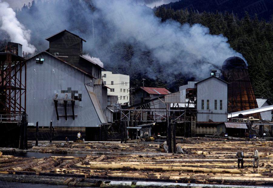 « Les trains de bois naviguent sur les fleuves et les fjords avant d'atteindre les usines de pâte à papier » - Paris Match n°1063, 20 septembre 1969