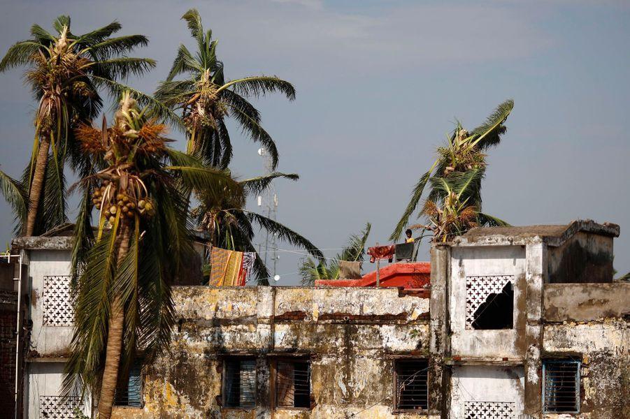Après le cyclone, la désolation