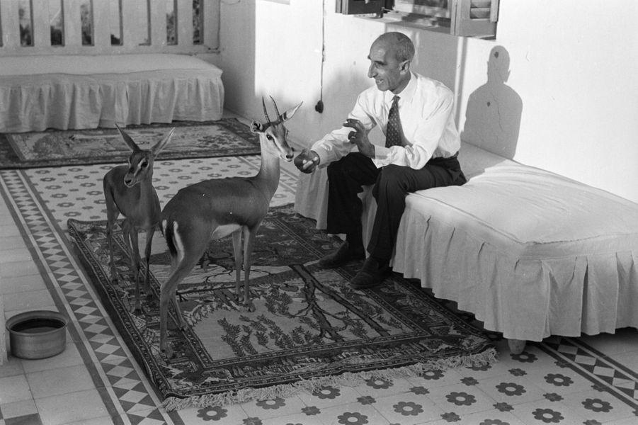 Mars 1954, à l'occasion d'un reportage sur le roi Saoud Ben Abdel Aziz d'Arabie Saoudite, rencontre avec l'Ambassadeur de France, Georges Gueyraud....