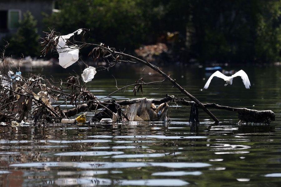 Les eaux olympiques sont polluées au Brésil.