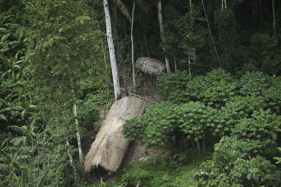 Au cœur de l'Amazonie, une tribu toujours isolée