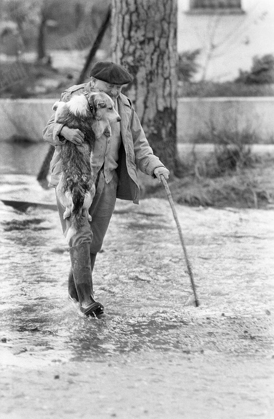 « Sur la route encore inondée, il i porte son sauveur qui maintenant a peur de l'eau. Bobby était un chien errant. Cest la GrOupUle qui lui donna son premier collier, le collier du sauvetage.» - Paris Match n°558, 19 décembre 1959.
