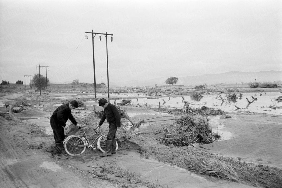« C'était leur maison au milieu des pêchers et des vignes. Elle a été emportée. Les parents sont morts. Les orphelins rescapés viennent voir ce qui leur reste : rien.» - Paris Match n°558, 19 décembre 1959.
