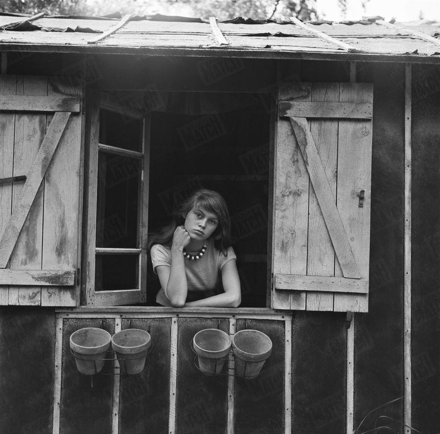 """« Son repaire. Au fond du jardin, à Louveciennes, Brigitte a réuni dans un vieux hangar tous ses trésors. Là, un ours pelé voisine avec une photo de la Pavlova. Et dans le bric-à-brac, un phonographe joue. Brigitte adore Couperin et Ravel. Seuls, sa sœur et son chien ont droit aux """"merveilles"""". » - Paris Match n°168, 31 mai 1952"""