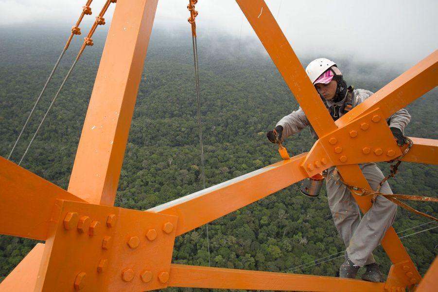 Des ouvriers travaillent à plus de 300 mètres de haut sur l'Observatoire de la haute tour d'Amazonie (ATTO)