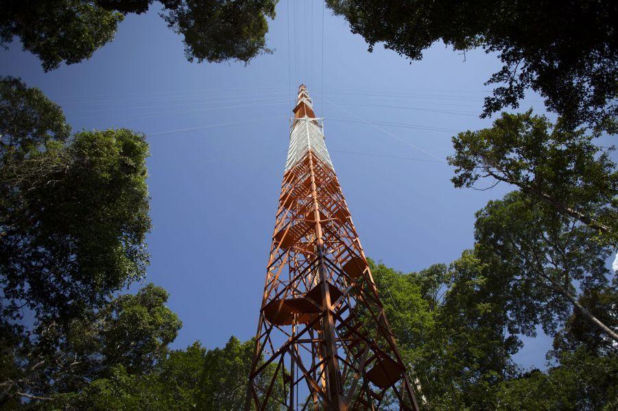 L'Observatoire de la haute tour d'Amazonie (ATTO)