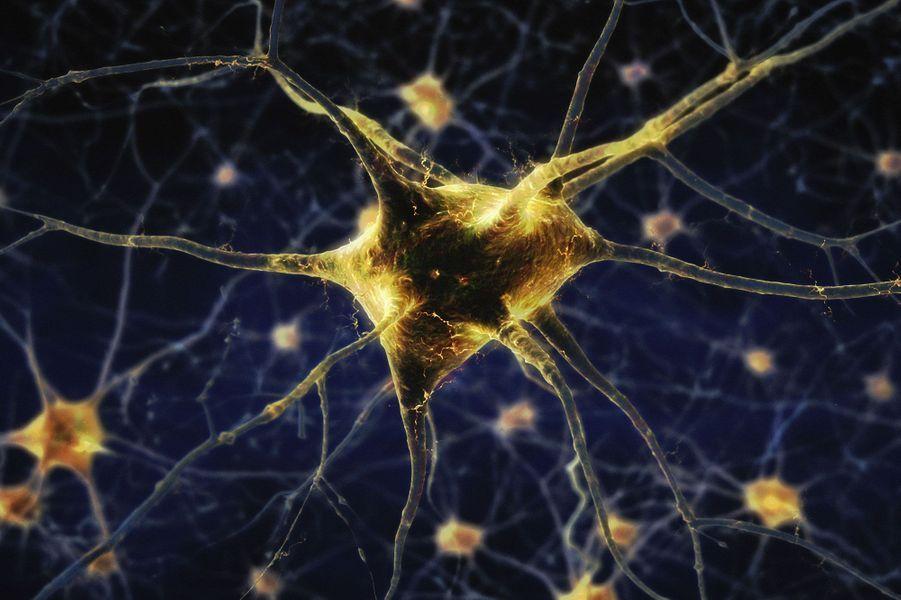 6 millions de réactions chimiques dans notre corps