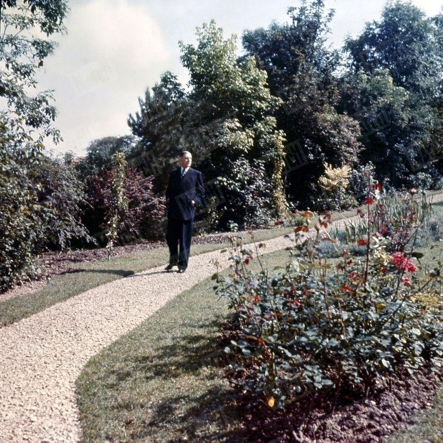 « Dans le petit parc de sa propriété de Colombey-les-Deux-Églises, le général de Gaulle se promène plusieurs fois par jour. Chaque promenade dure un quart d'heure. » - Paris Match n°288, 2 octobre 1954