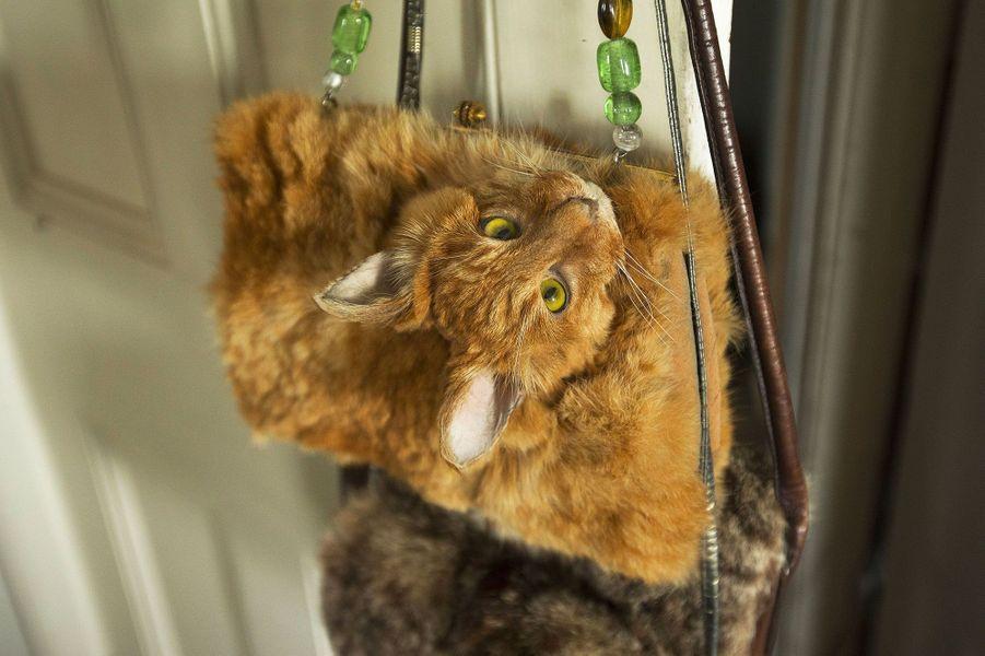 Elle transforme un chat en sac à main et le vend 370 euros