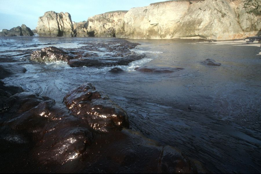 La marée noire provoquée par le naufrage du pétrolier Erika, en décembre 1999.