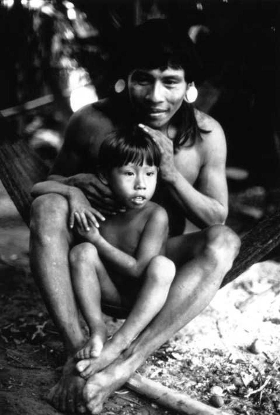Les Indiens waorani d'Amazonie équatorienne sont connus comme ʻles pères du jaguar' en référence à leurs chamanes qui reçoivent une aide de leurs ʻenfants' jaguars adoptés, leur garantissant ainsi que le gibier ne s'éloignera pas des humains. Le jaguar qui apparaît au chamane dans ses rêves lui révèle qu'il souhaite l'adopter en tant que père. Bien que la plupart des Waorani vivent désormais dans des villages sédentaires, d'autres groupes restent isolés dans le parc national Yasuni et ses environs. Nous ressentons que nous sommes un peuple en voie de disparition, nous a confié Ehenguime Enqueri Niwa, le porte-parole des Waorani. Depuis des siècles, les Waorani ont défendu leurs territoires, mais aujourd'hui les plus grandes menaces auxquelles ils sont confrontés sont l'exploitation pétrolière, forestière et minière. Qu'adviendra-t-il de nos enfants quand ils seront grands ? Où vivront-ils ?Les Waorani ont été contactés dans les années 1950 par des missionnaires évangélistes américains. Le père d'Enqueri a été l'un des premiers membres de sa tribu à les avoir rencontrés.