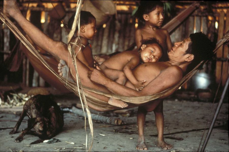 Pour la fête des pères, l'association Survival (www.survivalfrance.org), qui lutte depuis 1969 en faveur des droits des indigènes de par le monde, publie une galerie photos de papas, issus de différentes ethnies, qui ne savent pas quelle terre ils pourront laisser à leurs enfants. L'occasion de partir à la découverte de peuples passionnants.Textes de Joanna Eede. Ici, un Indien yanomami et son fils dans un hamac tissé en fibres de bananier. Dès l'âge de cinq ans, les garçons yanomami accompagnent leur père à la chasse. Ils apprennent à grimper aux arbres en liant leurs pieds avec des lianes et à chasser les petits oiseaux à l'arc. Parfois, les chasseurs m'appelaient à l'aube quand ils partaient en forêt, dit Davi Kopenawa, le porte-parole des Indiens yanomami. J'y allais avec eux et quand ils tuaient du petit gibier, ils me le donnaient.C'est ainsi que j'ai grandi dans la forêt.