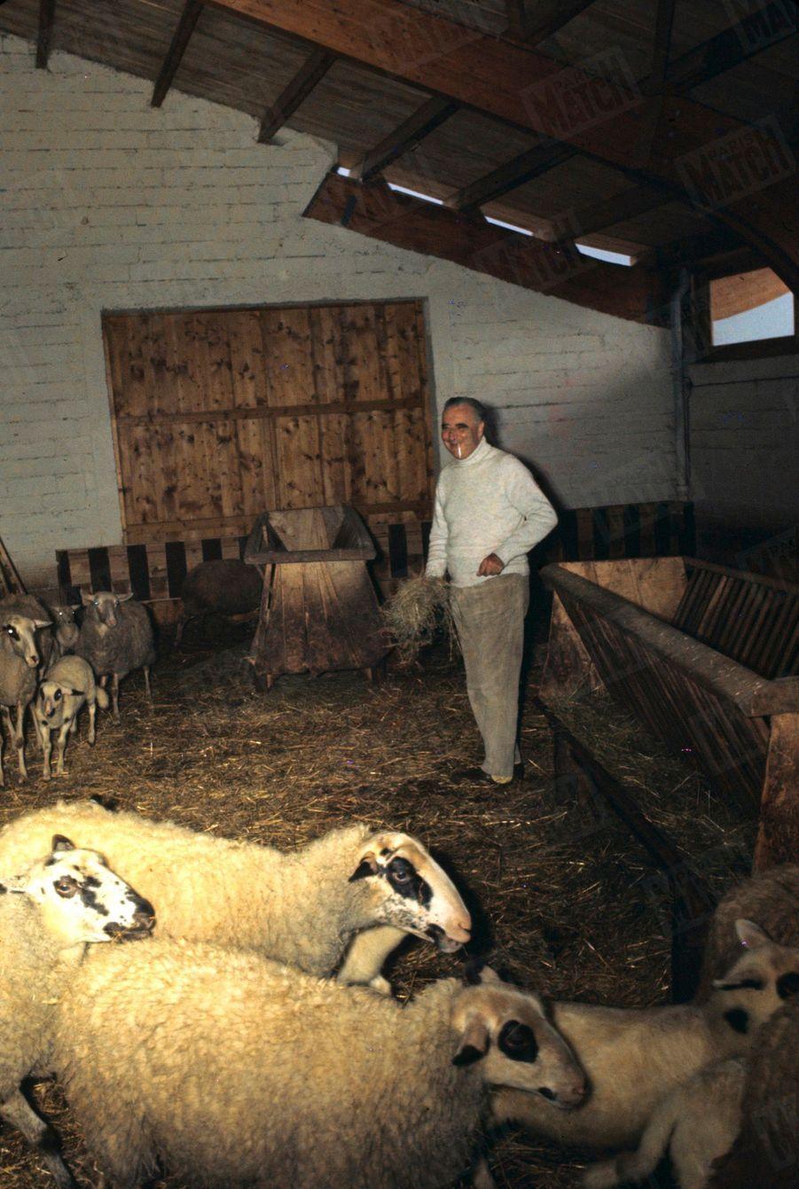 Le président Georges Pompidou dans la bergerie de sa ferme, à Cajarc, dans le Quercy, pour les fêtes de Pâques, en avril 1970.