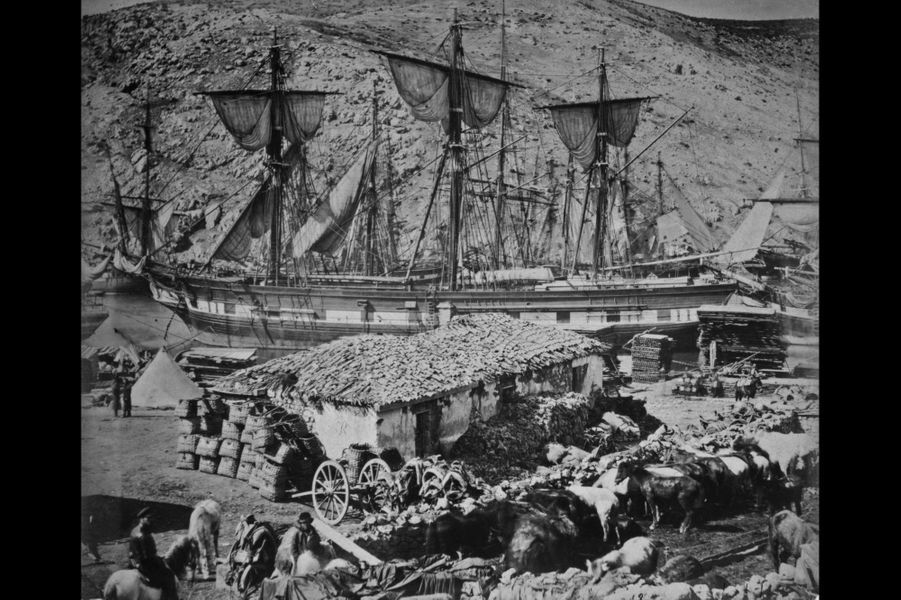 Dans le port de Balaklava