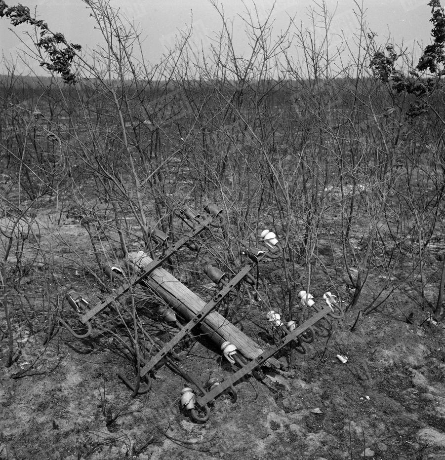 «Le fureur de l'incendie a tout détruit sur son passage. Sur des dizaines de kilomètres, les seuls vestiges des lignes télégraphiques sont ces sont ces armatures de fer tordues et calcinées. De nombreuses fermes, privées de moyens d'appels téléphoniques, n'ont pu alerter à temps les sauveteurs.» - Paris Match n°24, 3 septembre 1949