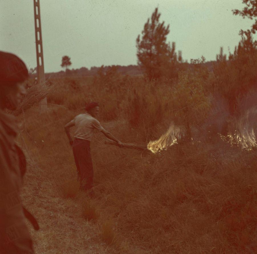 «La technique du contre-feu permet dans bien des cas de stopper l'avance de l'incendie. Pour se défendre contre une saute de vent défavorable, on arrose le terrain situé entre le contre-feu et les sauveteurs. Un bâton de résine suffit à déclencher des flammes de 40 mètres.» - Paris Match n°24, 3 septembre 1949