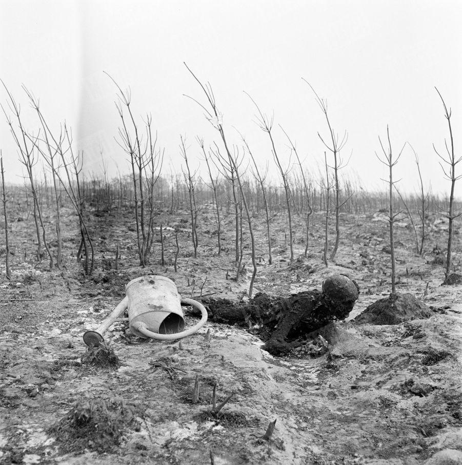 «Aux Trois Lagunes, M. Gisquet est tombé asphyxié en attaquant le feu. Près de lui, l'arrosoir qu'il emporta de chez lui.» - Paris Match n°24, 3 septembre 1949