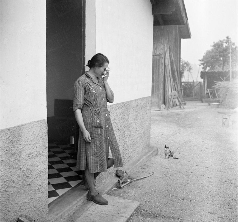 «Dans sa maison intacte, Mme Gisquet n'a retrouvé qu'un seul ami : son petit chat.» - Paris Match n°24, 3 septembre 1949