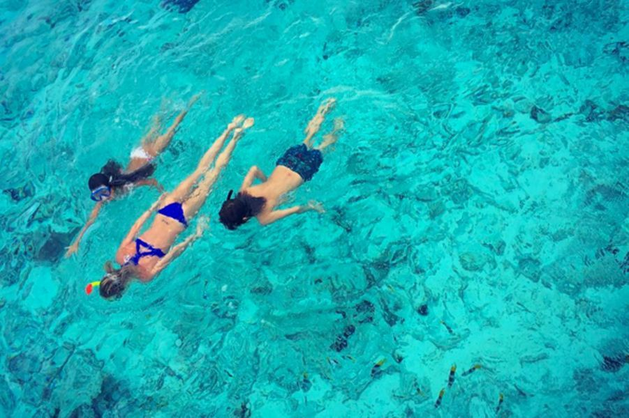 Laeticia Hallyday fait de la plongée avec l'une de ses filles et un ami, à Bora Bora