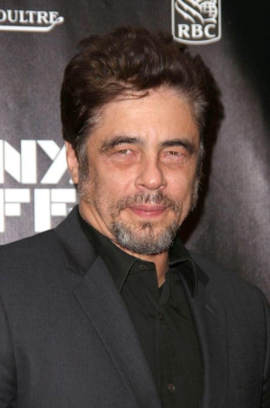 "Benicio del Toro à la projection de ""Inherent Vice"" à New York"