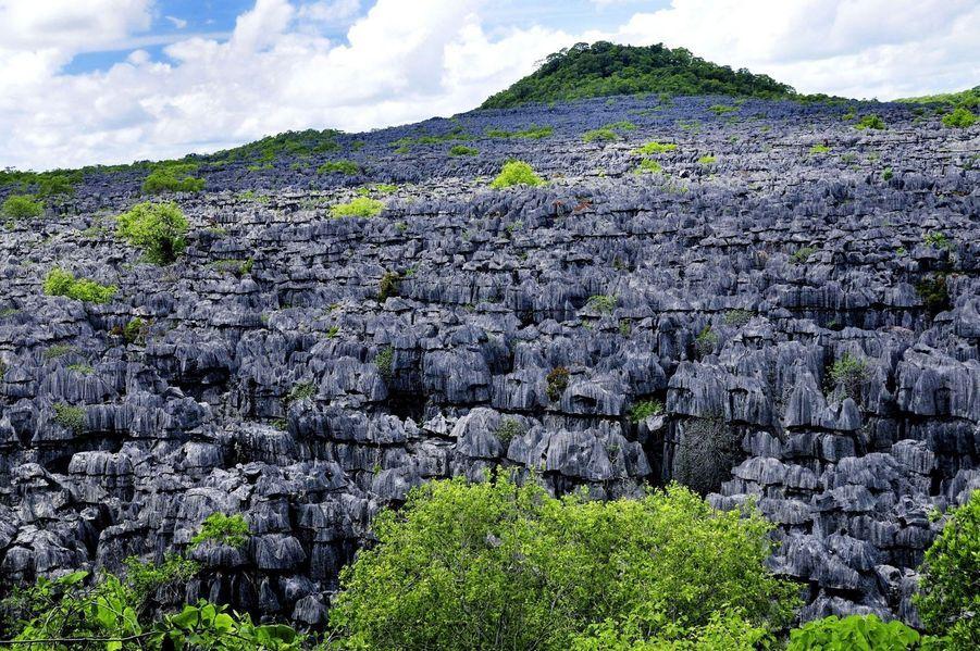 Ankarana National Park, Madagascar