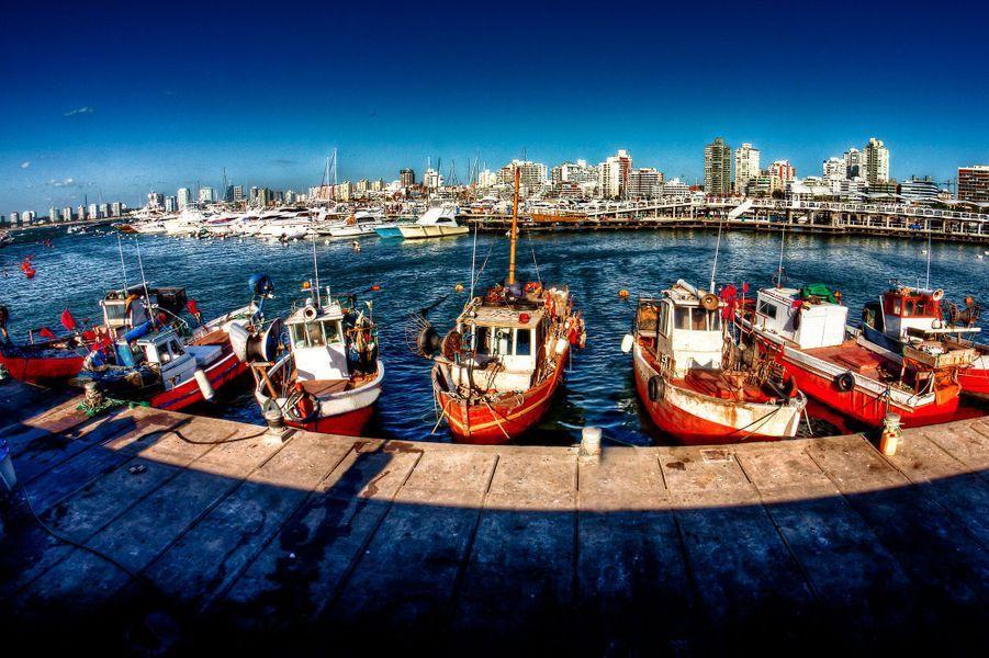 Le port de Maldonado